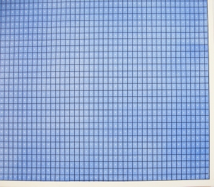 Image of Blue Grid