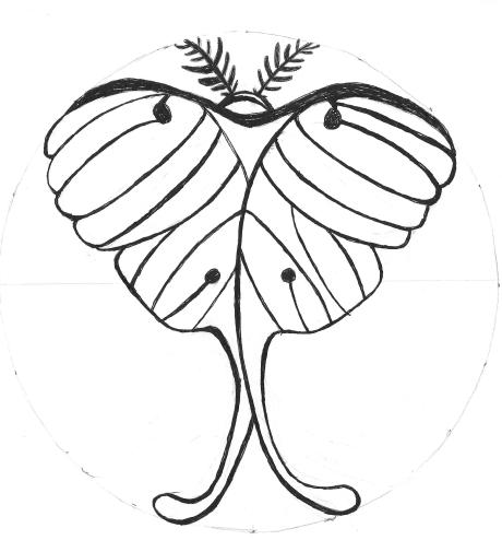 Manhole Lunar Moth